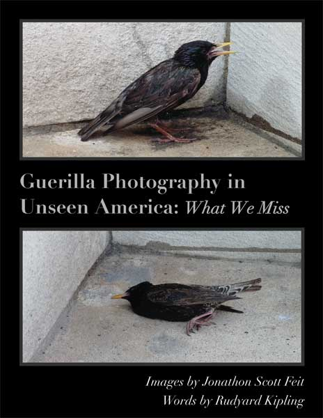 Cover - Unseen America